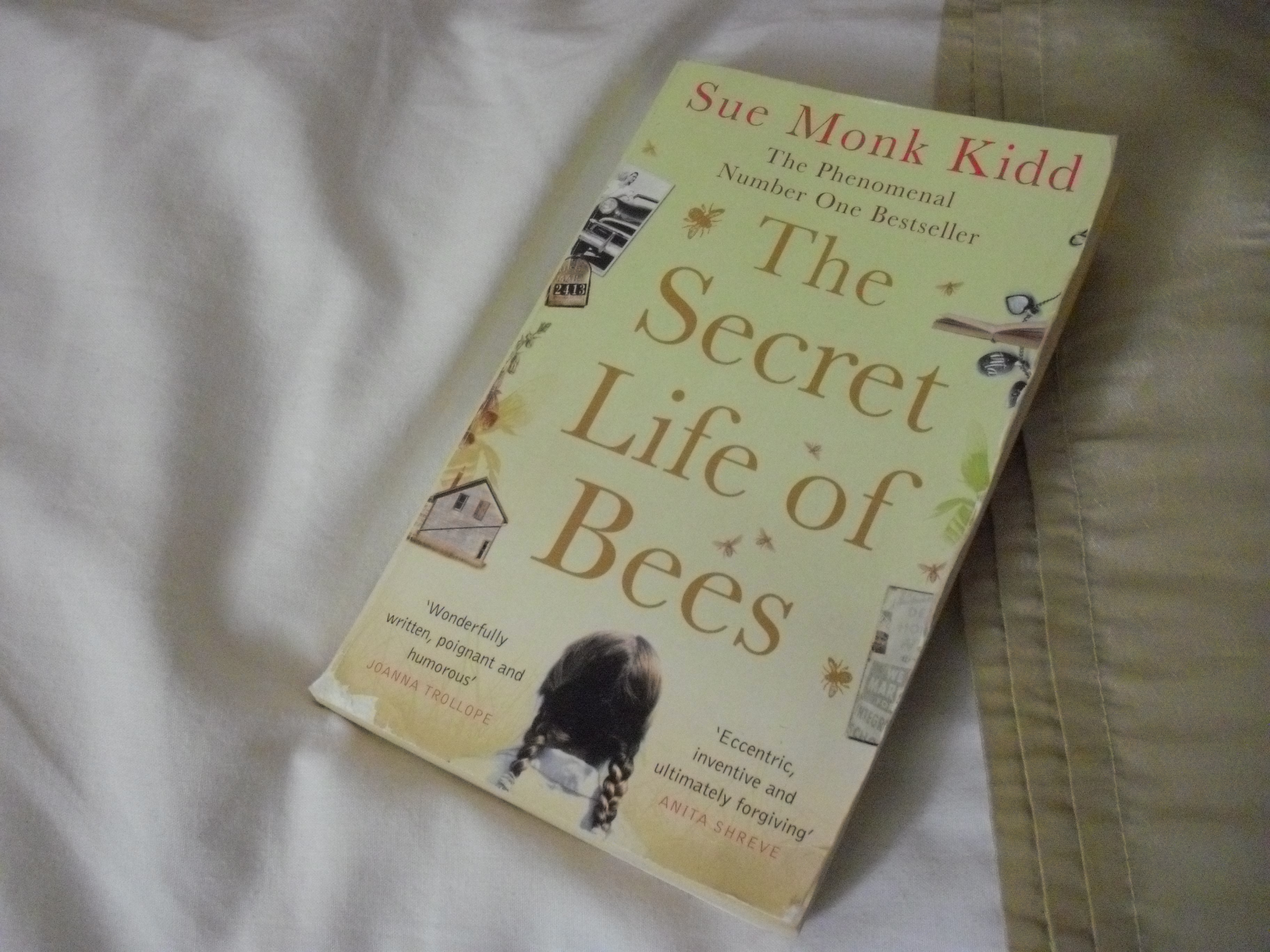 the secret life of bees book report Book report by: abby rubel the secret life of bees by: sue monk kidd in the secret life of bees, the author is trying to tell us that everyone needs to overcome.