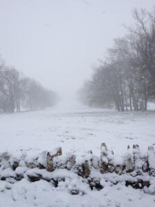 snow18